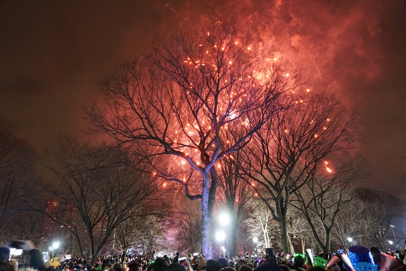 Central Park on New Years Eve
