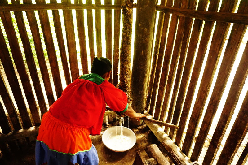 Drying the yuca, Cuyabeno Reserve, Visit Amazon in Ecuador