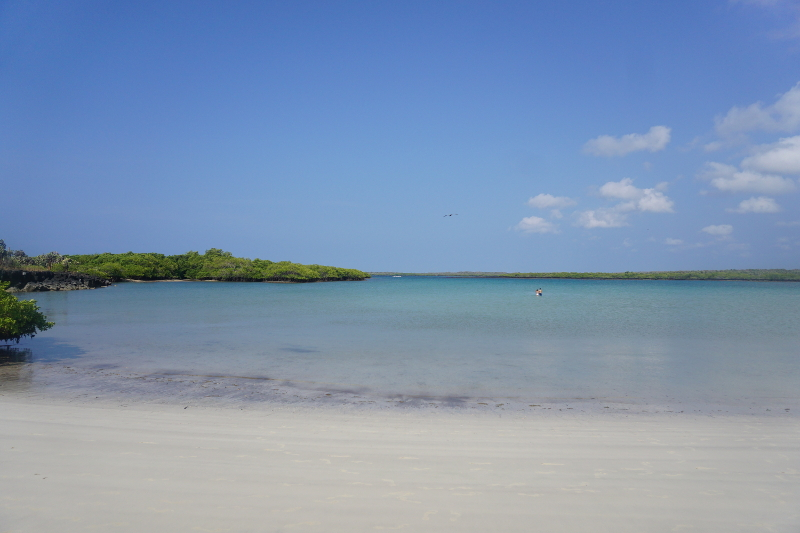 Tortuga Bay, Santa Cruz, Galapagos Islands