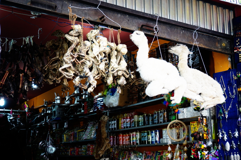 Llamas, Witches Market, La Paz