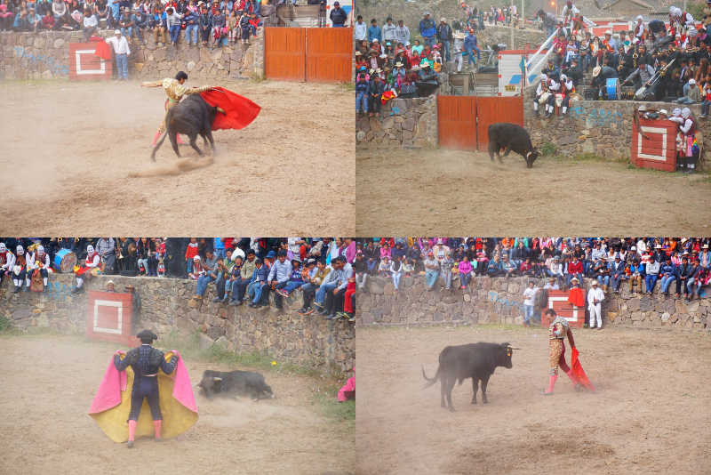 Bullfighting, Ollan, Sacred Valley, Peru