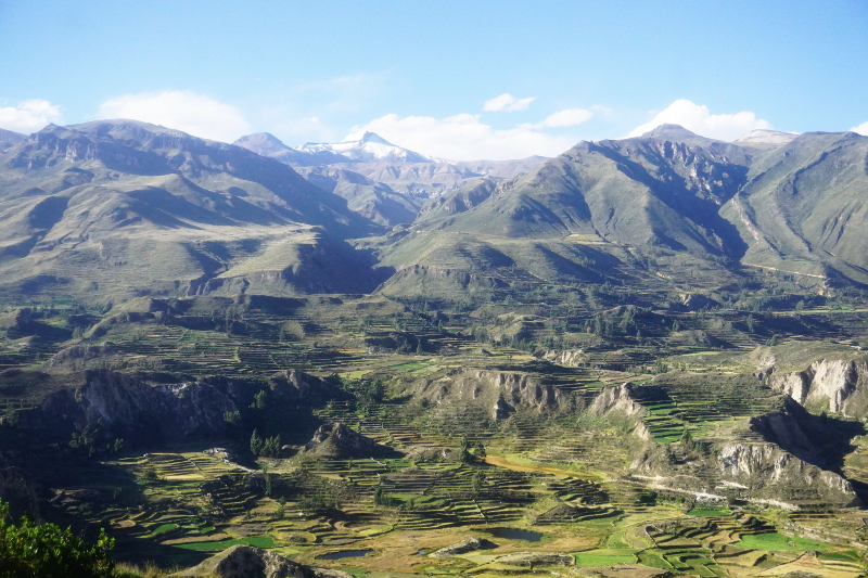Amazing View, Colca Canyon, Peru