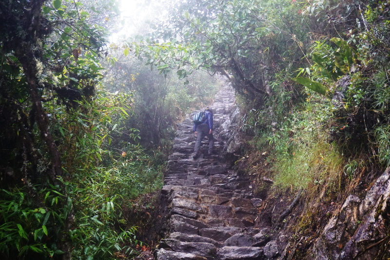 Hiking to Montana Machu Picchu, Peru