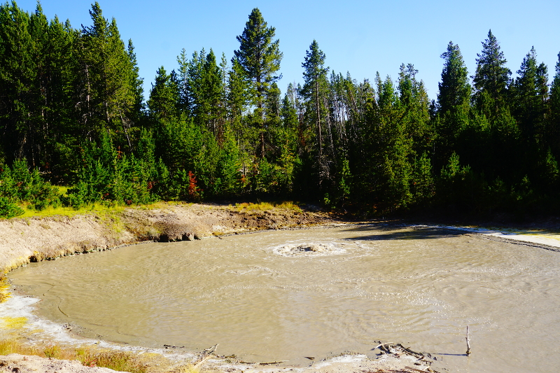 Mudpot, Yellowstone National Park, USA